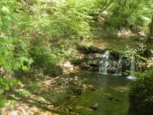 Wasserfall Bächli